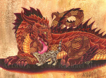Dragon and Fluffykins by rachaelm5