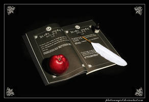 Death Note by PlatinumGirl