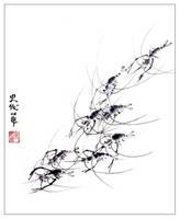 Schooling Shrimp by xocieira