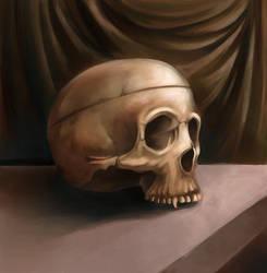 a skull by titta