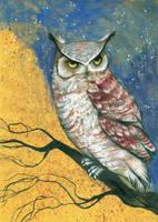 Owl by GreenSprite