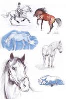 horses of dA by GreenSprite