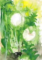 Dandelions by GreenSprite