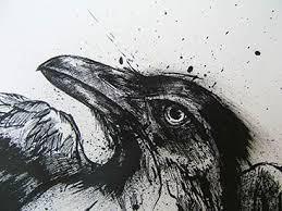 Raven by ElectricRoseShade
