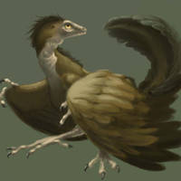 Archaeopteryx by BlueNudibranch