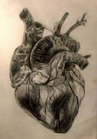 Heart by Valeradaine