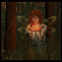 Woodland by spiritsighs