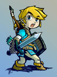 BOTW Toon Link by nato2469