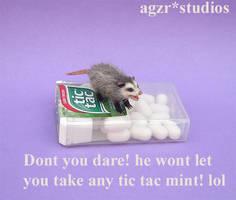 Handmade Miniature Opossum  - Possum 1:12 scale by AGZR-STUDIOS
