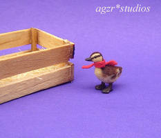Ooak handmade mallard duckling and Crate 1:12 by AGZR-STUDIOS
