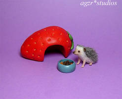 Ooak 1:12 Handmade Miniature hedgehog and house by AGZR-STUDIOS