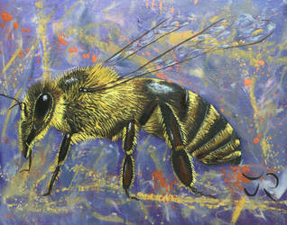 Bee individual by Abuttonpress2Nothing