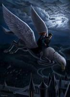 Night flight Harry Potter by Toncheg