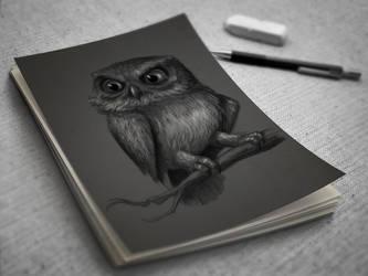 Owl by mostafagom3a