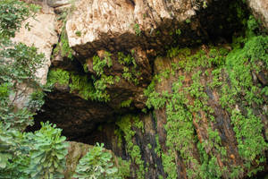 Detail Ancient caves by RDores