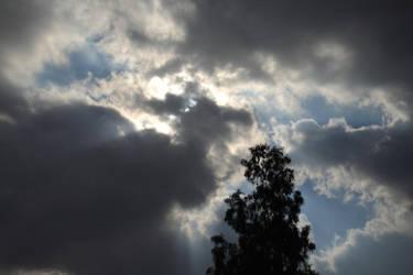 Hiding the Sun by RDores