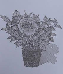Rosebush by tanyaheidrich