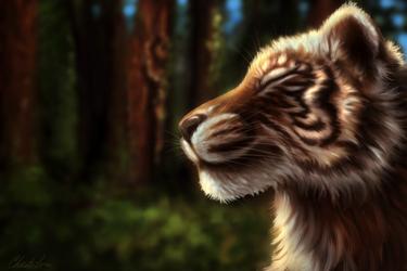 Tiger by grumkinz