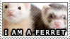 I Am A Ferret by genkistamps