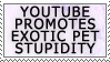 Youtube Promotes Pet Stupid by genkistamps