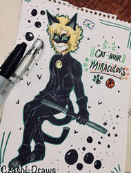 Another Cat Noir,, by Czashi-Draws9