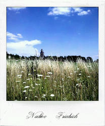 Nature - Part06 by engelsche