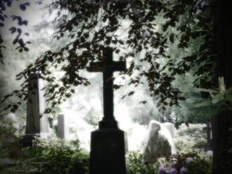 Cemetery - Part01 by engelsche