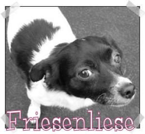 Friesenliese's Profile Picture