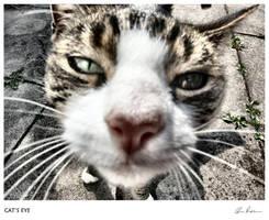 Cat's Eye by hotwir3