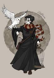 Harry Potter by IrenHorrors
