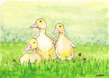 Ducklings by thelastmiracle