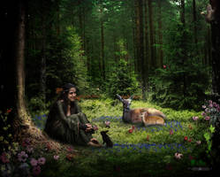 Spring by robhas1left