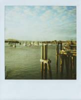 Polaroid 2 by lemoncakes