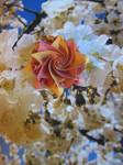 origami modular Aquilegia flower by aarrnnoo0123