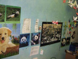 My picture wall 4 by aarrnnoo0123