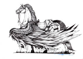 Armoured Pegasus Concept by Schwarze1