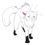 Warrior Cats #004 - Blackstar by Kuroi-Hitsuji