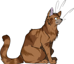 Warrior Cats #008 - Onestar by Kuroi-Hitsuji