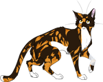 Warrior Cats #010 - Spottedleaf by Kuroi-Hitsuji