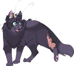 Warrior Cats #012 - Cinderpelt by Kuroi-Hitsuji
