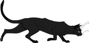 Warrior Cats #022 - Crowfeather by Kuroi-Hitsuji