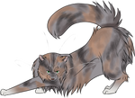 Warrior Cats #023 - Tawnypelt by Kuroi-Hitsuji