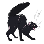 Warrior Cats #025 - Nightstar by Kuroi-Hitsuji
