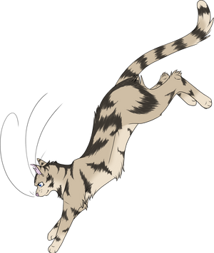 Warrior Cats #029 - Longtail by Kuroi-Hitsuji