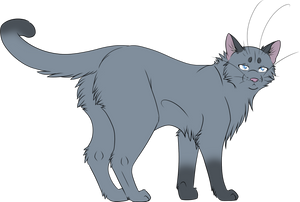 Warrior Cats #034 - Mistyfoot by Kuroi-Hitsuji