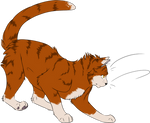 Warrior Cats #040 - Thunder by Kuroi-Hitsuji