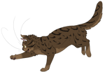 Warrior Cats #044 - Sparrowpaw by Kuroi-Hitsuji