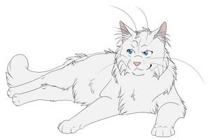 Warrior Cats #046 - Cloudtail by Kuroi-Hitsuji