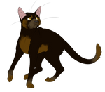 Warrior Cats #050 - Spiderleg by Kuroi-Hitsuji
