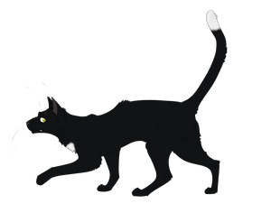 Warrior Cats #057 - Ravenpaw by Kuroi-Hitsuji